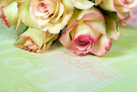 Rose bouquet for mother on pastel paper. Stock Photo