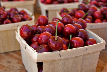 Michigan cherries in wooden produce boxes at the market. Stock Photo - 9790133