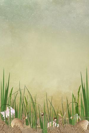 weeds: seashells and starfish hidden in beach grass Stock Photo