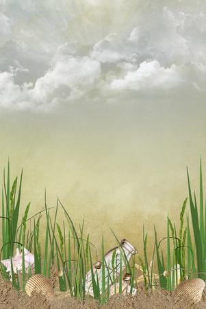 Seashells and starfish on the beach in grass. Zdjęcie Seryjne