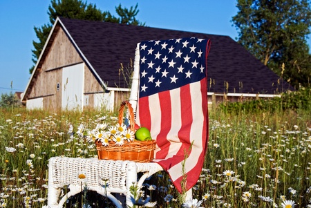old furniture: Green apples and daisies on chair with flag.