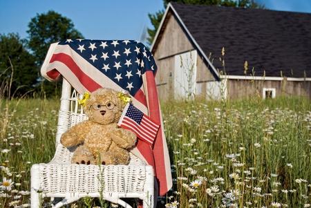 teddy bear with American flag Stock Photo - 10109845