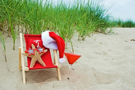 starfish with santa hat and cocktail