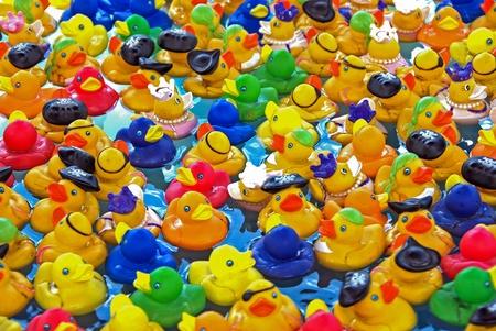 kleurrijke rubberen eenden in het zwembad Stockfoto