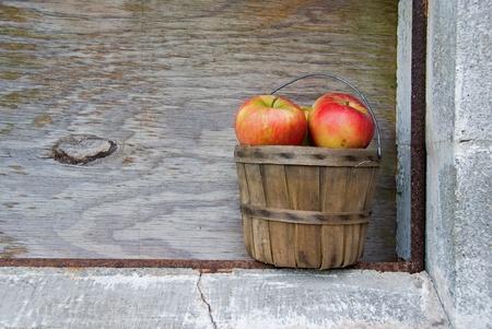 bushel: autumn apples in old bushel basket