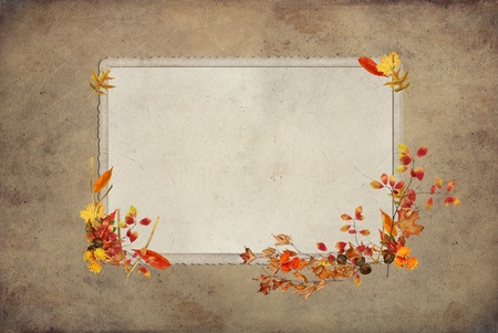 Thanksgiving frame with wishbone and fall foliage. photo