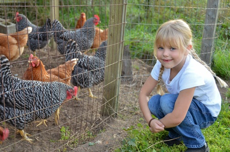 Little girl with farm chickens.