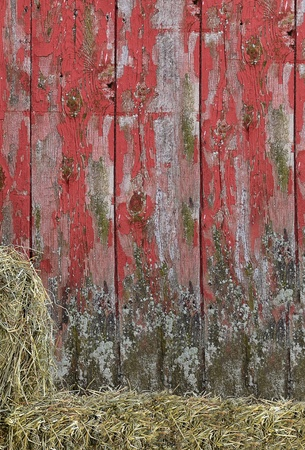 Hay bales stacked by old red barn. photo