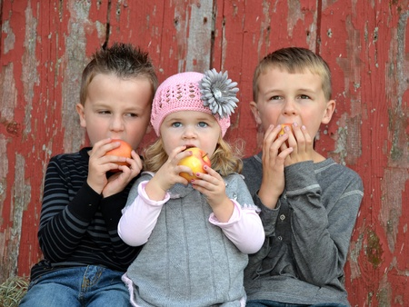 old red barn: children eating apples by old red barn
