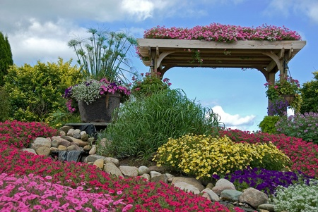 Summer rock garden with waterfall and trellis