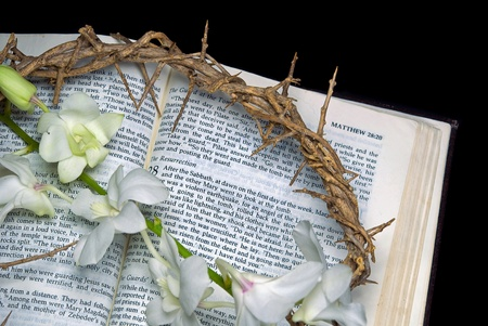 Crown of thorns with orchids on Holy Bible  photo