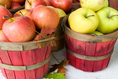 bushel: Fall apples with leaves Stock Photo