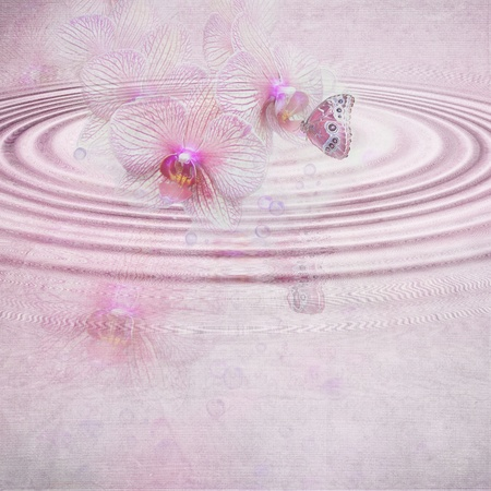reflection mirror: Butterfly and pink orchid rippled reflection