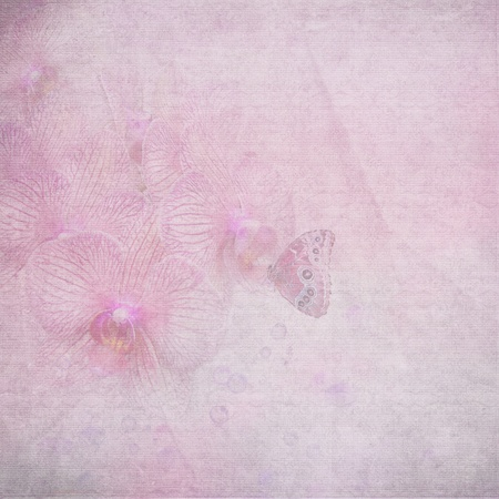faded: butterfly on orchid with pink texture overlay