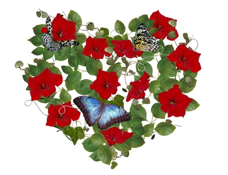 petunia: Painting a blue butterfly on a petunia heart