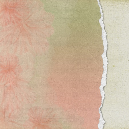 floral paper with torn edge Stock Photo