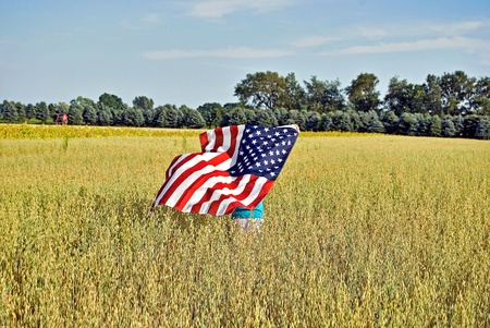 american midwest: flag in wheat field