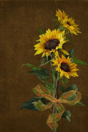 弓とひまわりの花束