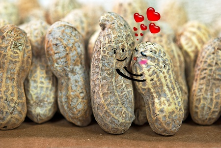 courtship: pair of peanuts hugging