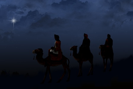 three animals: three wise men following a bright star