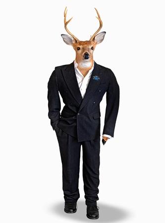 clothing rack: Big buck wearing a wedding tuxedo