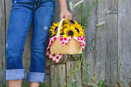 queen anne   s lace: girl in blue jeans and sunflower basket Stock Photo