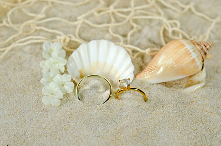 diamond ring with seashells in sand