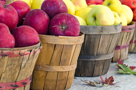 bushel: fall apples in bushel baskets with leaves Stock Photo