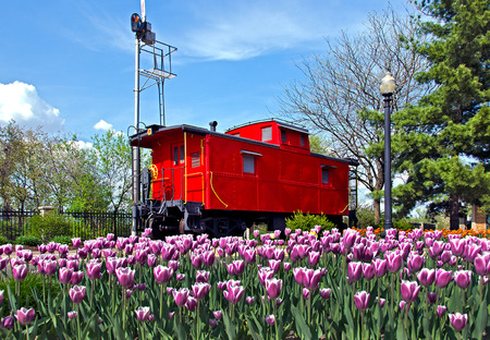caboose: red caboose with tulips