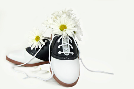 daisies in saddle shoe Banco de Imagens