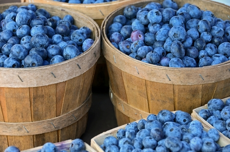 bushel: blueberries in bushel baskets at the market Stock Photo