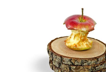 rotting apple core on tree