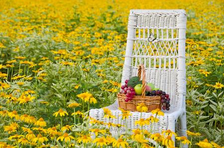 fruitmand: fruitmand op een stoel in een veld van gele margrieten