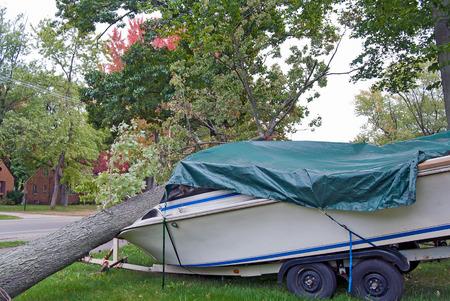 fallen tree on motor boat after a storm