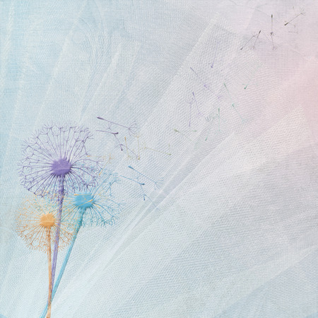 dandelion bouquet on wedding tulle