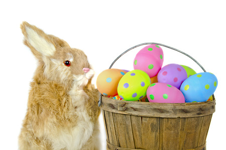 bushel: rabbit with polka dot Easter eggs in bushel basket
