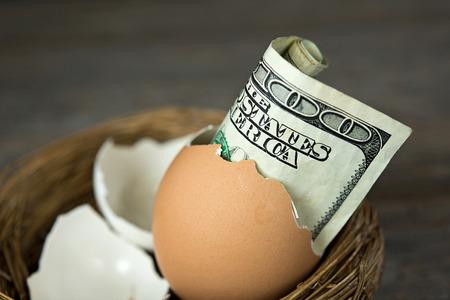 an egg shell: hundred dollar bill in brown egg shell in nest Stock Photo