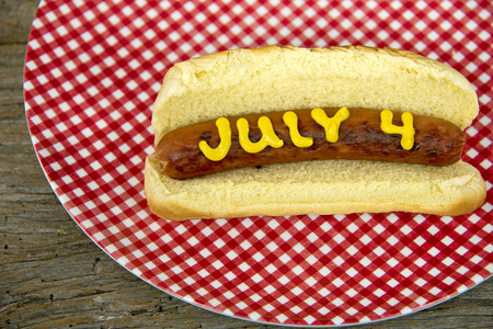 gingham: 4th of July holiday hot dog on gingham plate