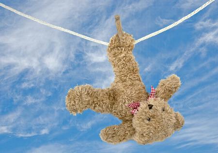 clothesline: teddy bear hanging on clothesline Stock Photo
