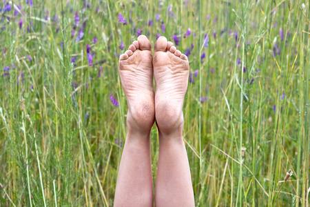 pieds sales: pieds nus dans des fleurs sauvages pourpres sales