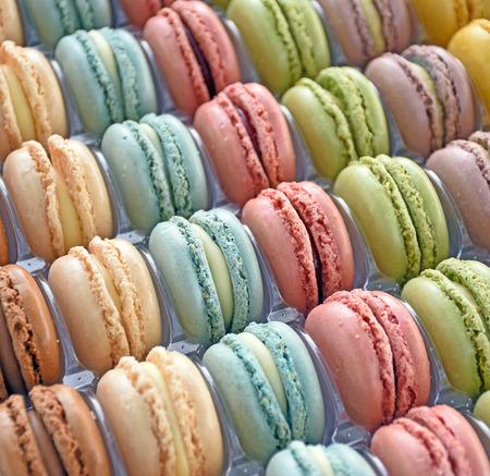 rows of French macaroons in plastic tray