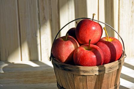 red apples in basket in striped sunlight Stok Fotoğraf