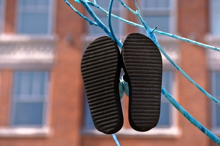 flipflops: flip-flops hanging on a blue branch in the city Stock Photo
