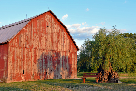 barns: red barn in Michigan with tree shadow