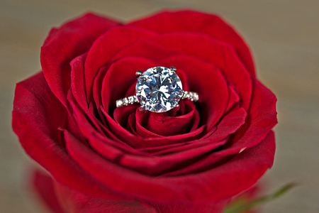 close up of a diamond ring in red rose