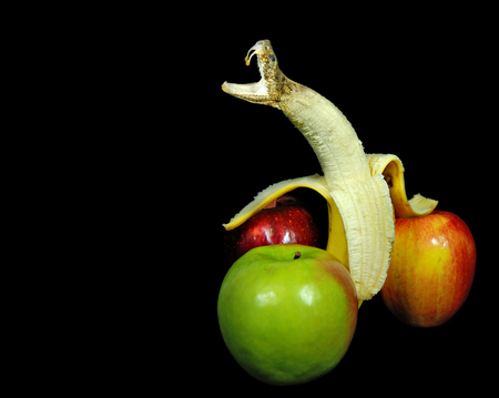 morphing: rattle snake head morphing out of peeled banana