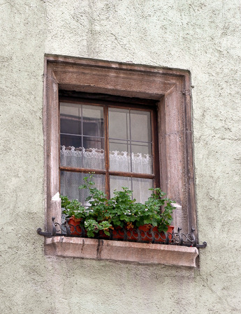 flower box: old European house window with flower box