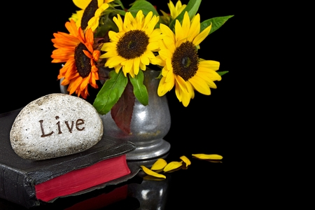 word live carved in stone on Bible with sunflower bouquet