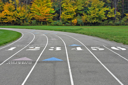 venue: track and field venue in autumn woods