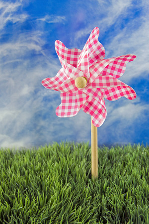 gingham: pink gingham pinwheel in grass with summer sky background Stock Photo